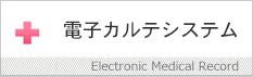 電子カルテシステム